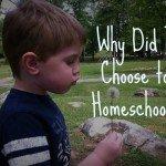 whydoihomeschoolpic