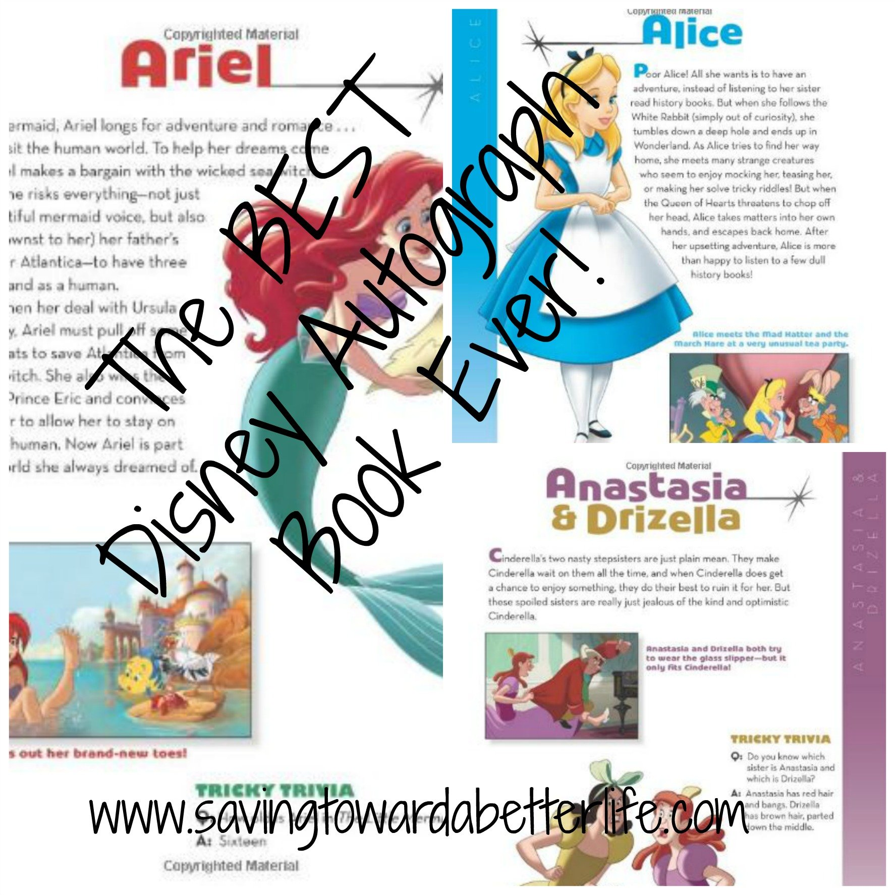 graphic regarding Printable Disney Autograph Book known as The Ideal Disney Autograph E-book At any time Yourself Need to have This for Your