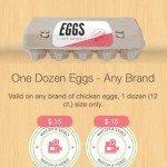 eggsibotta