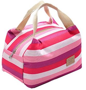 Cute Insulated Lunch Totes - $4 34 SHIPPED - Saving Toward A